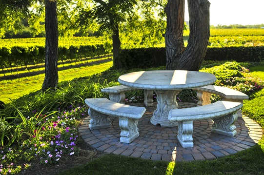 Benches and a table near a vineyard.